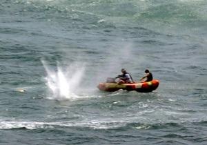 Жертвой акулы в Новой Зеландии стал победитель Берлинале