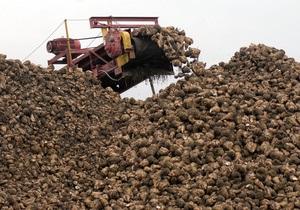 Ъ: Украина сократит посевы сахарной свеклы из-за перепроизводства сахара