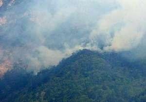 В Крыму горит два гектара леса