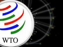 Вступление Украины во ВТО могут рассмотреть через месяц