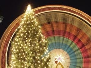 В Молдове арестовали новогоднюю елку