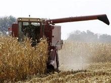В Херсонской области из-за комбайна сгорело 9 гектаров зерновых