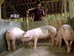РФ ограничила ввоз мясной продукции из четырех штатов США из-за гриппа