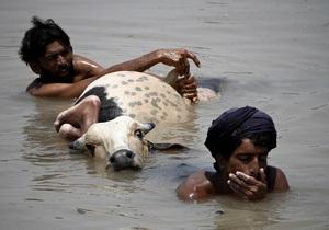 ООН: Изменение климата на планете приведет к резкому росту стихийных бедствий