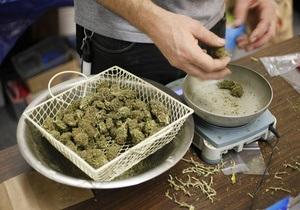 В Донецкой области у безработного изъяли марихуаны на 10 млн гривен
