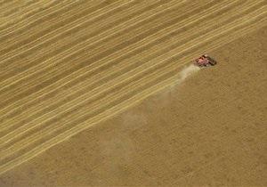 Кабмин может продлить квотирование экспорта зерна – эксперт