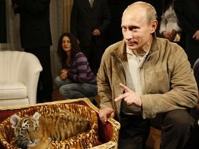 Стало известно, куда Путин поселил своего тигренка