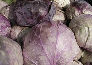 Украина вошла в тройку крупнейших поставщиков замороженных овощей и фруктов в Россию