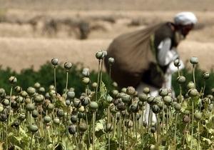 ООН зафиксировала рекордную урожайность опийного мака в Афганистане