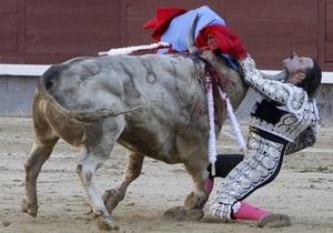 В Мадриде бык проткнул матадору подбородок