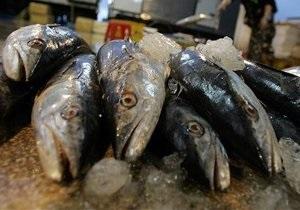 Азаров заявил о  покращенні  и посоветовал украинцам есть больше морепродуктов