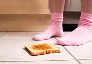 Британские ученые подтвердили: еда, быстро поднятая с пола, не считается упавшей