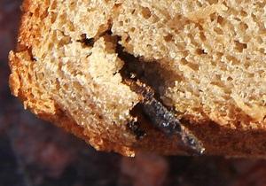 новости Керчи - хлеб - хлеб с гвоздем - В Керчи молодой паре продали буханку хлеба с гвоздем