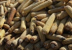 DW: Оргстекло из кукурузы