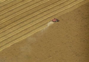 i: Минэкономики объявило о повторном приеме заявок на получение экспортных квот на зерно