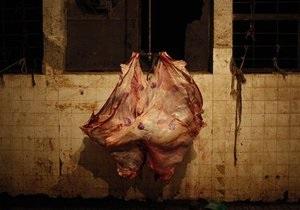 В Киевской области изъяли 27 тонн некачественного мяса и рыбы
