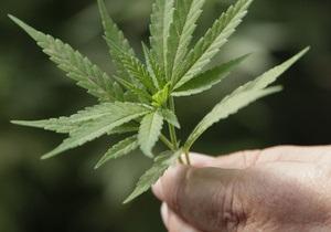 Ученые заявили, что курение марихуаны безвреднее табака