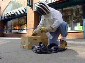 Тысячи пчел напали на магазин компьютерных игр в Нью-Йорке