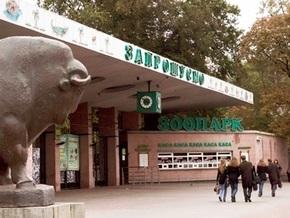 Киевский зоопарк будут сдавать в аренду для корпоративных праздников