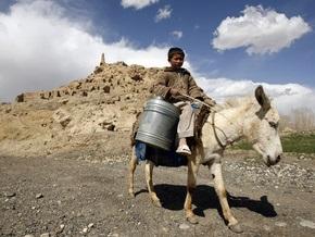 Афганские боевики начали использовать ослов со взрывчаткой в качестве оружия