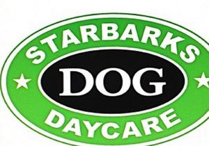 Starbucks просит собачий приют в США отказаться от похожего названия