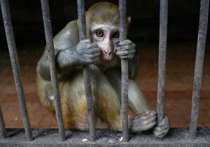 Шесть зоопарков обратились к Януковичу