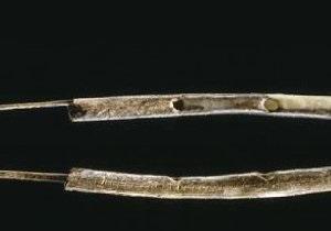 Археологи установили возраст древнейших музыкальных инструментов