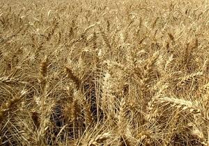 Евросоюз вслед за ВБ заявил о неоправданности продления Украиной квотирования экспорта зерна