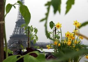 Сад, который живет на крыше. Как жители мегаполисов возвращают им природу