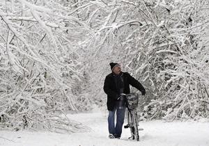 В Ивано-Франковской области пропал без вести мужчина, который ушел  в лес за елкой
