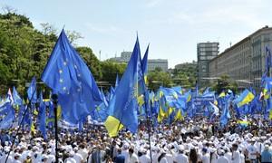 митинги в Киеве - Партия регионов - В Киеве завершился антифашистский марш: участники приняли резолюцию