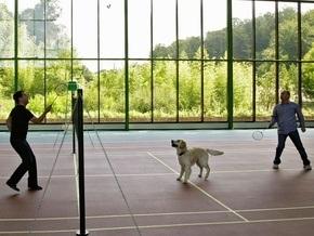 Фотогалерея: Двое в Сочи, не считая собаки