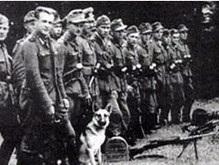 Немецкие историки: Отряды ОУН-УПА не воевали против Вермахта