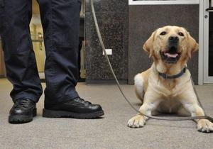 В Бразилии наркоторговцы угрожают полицейскому псу