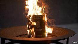 Командующий НАТО извинился за уничтожение Корана