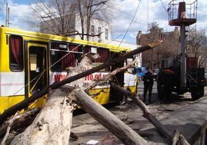 В Одессе на маршрутку с пассажирами упало дерево