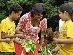 Мишель Обама собрала 50 кг овощей со своего огорода возле Белого дома