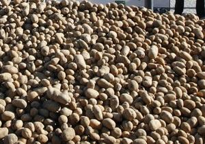 Россия ограничила ввоз картофеля из Египта