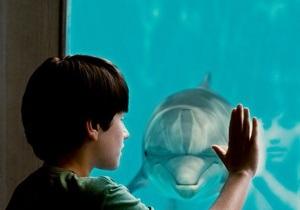 История раненого дельфина обошла Короля Льва в американском прокате