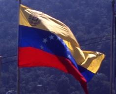 Венесуэла просит Интерпол  помочь в аресте экс-президента Переса