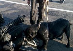 В Донецке охранники Януковича с собаками обыскали журналистов