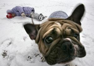 Сегодня в Украине побит температурный минимум этой зимы