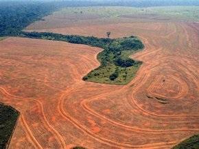 Бразилия сократит вырубку деревьев