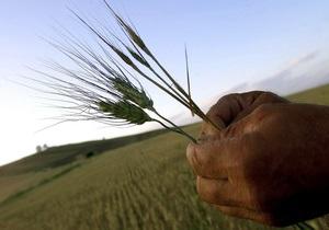 Рада ввела пошлины на экспорт зерновых
