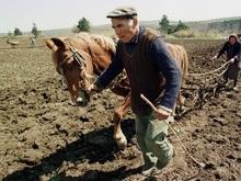 Литвин требует продлить мораторий на продажу земли