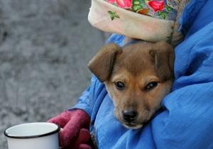 Черновецкий поручил до 4 февраля организовать пункты обогрева для бездомных