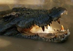 Киевский зоопарк проведет акцию Обед крокодила