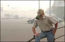 Ученые: Выхлопные газы снижают интеллект