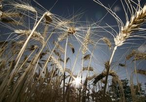 В Донецкой области предприниматель совершил хищение пшеницы на сумму в 1,4 млн гривен