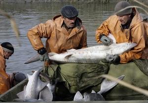 Казахстан предложил не ловить осетровых в Каспийском море пять лет